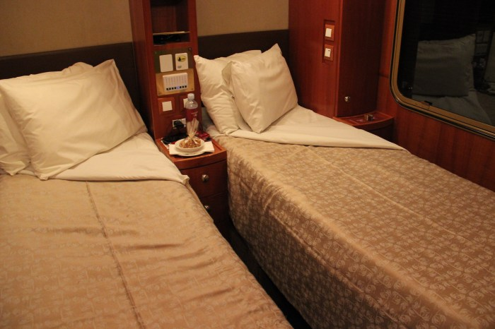 Platinum Cabin Night Time The Ghan Train