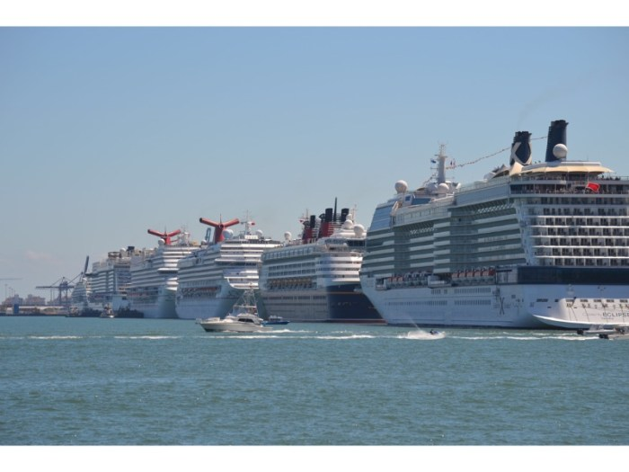 cruise ships port miami