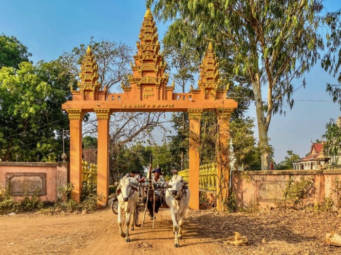 Cambodia Ox Cart