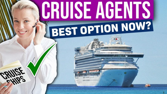 Should You Only Book Cruises Via A Cruise Agent