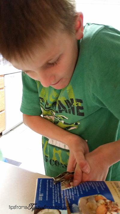 Kids DIY Recycled Bird Feeder