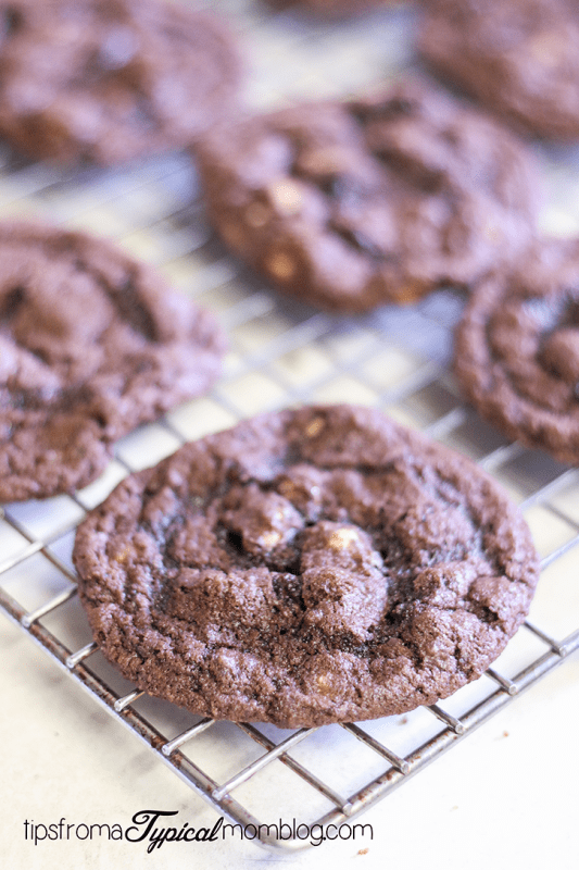 Chewy Chocolate Reese's Peanut Butter Chip Cookies