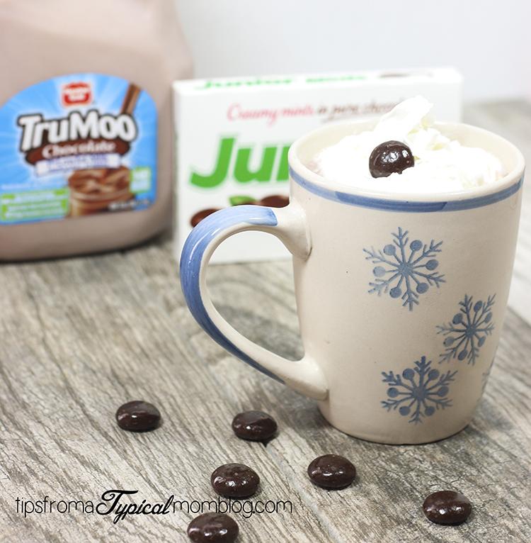 Hot Chocolate Mint Malt with TruMoo