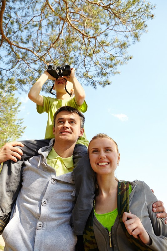Summer Family Activity Ideas