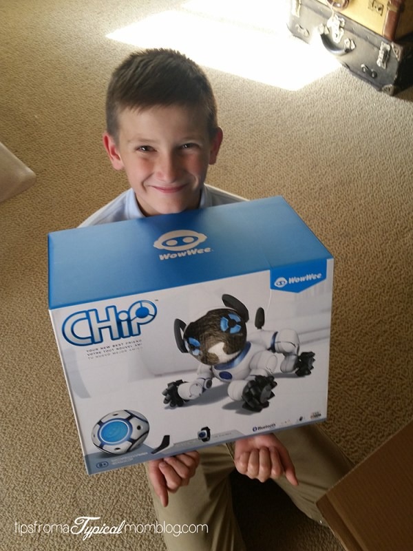 WowWee Chip Review
