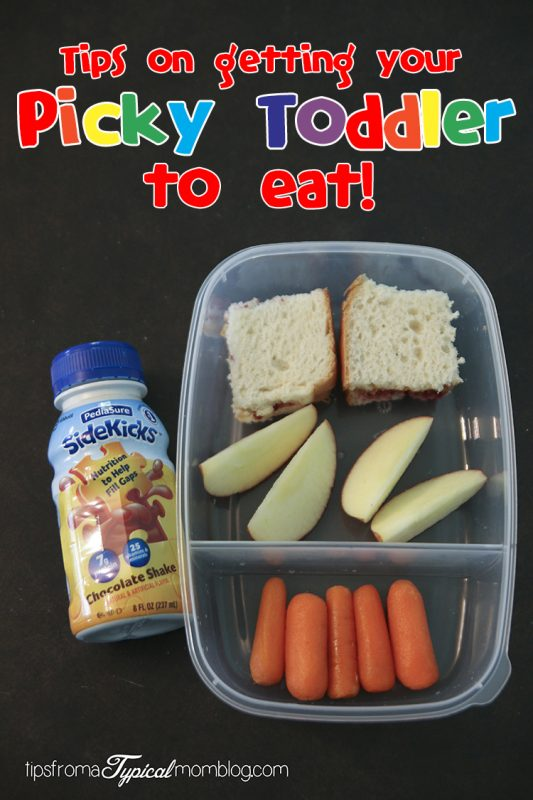 Tips on Getting Your Picky Toddler to Eat