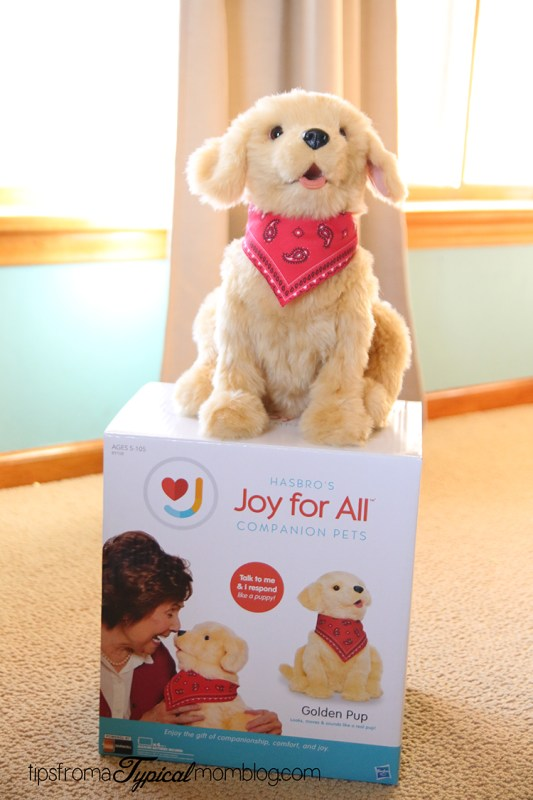 Joy For All Companion Pets