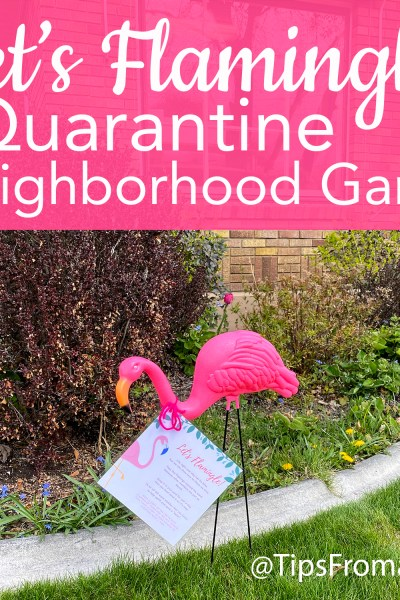 Lets Flamingle Quarantine Neighborhood Game
