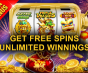 free spin empire777