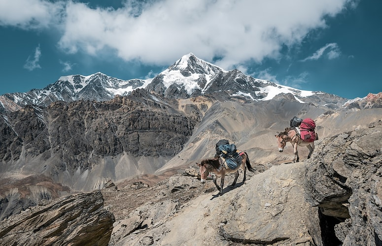 Where should you travel next to Nepal?
