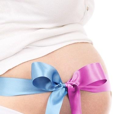 Embarazada en Texas – Chip perinatal