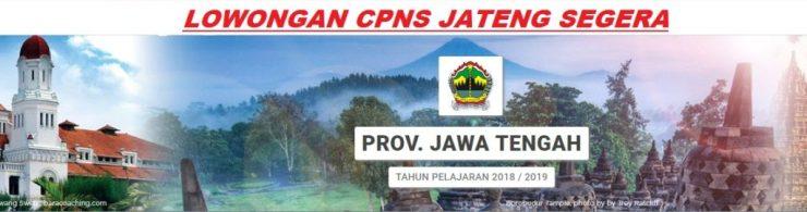 Petunjuk Cara Pendaftaran CPNS Provinsi Jawa Tengah SMA D3 S1 Tahun 2018 2019, Bagaimana Mekanisme dan Alur Cara Pendaftaran CPNS Provinsi Jawa Tengah Jateng 2018.