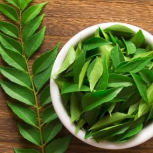 Curry_Leaves