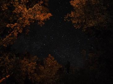 Stars and firelight.