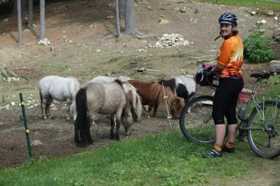 Not my little ponies