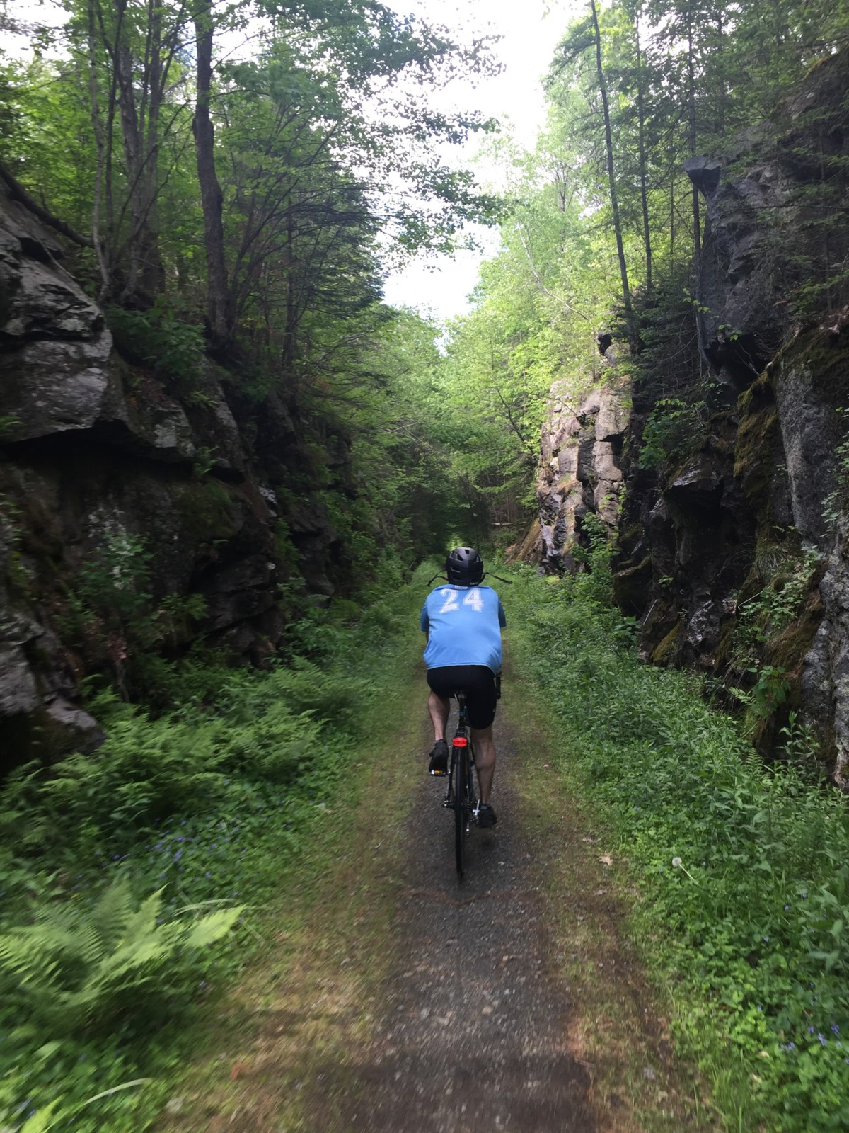 Zoom! One of the most scenic sections of the Northern Rail Trail (photo: Seth)