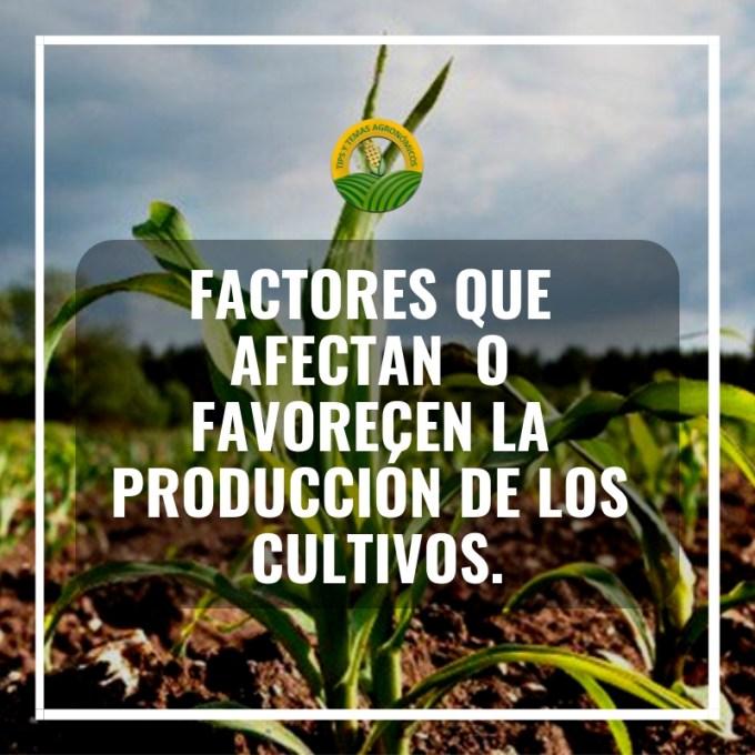 Factores que afectanla produccion de los cultivos