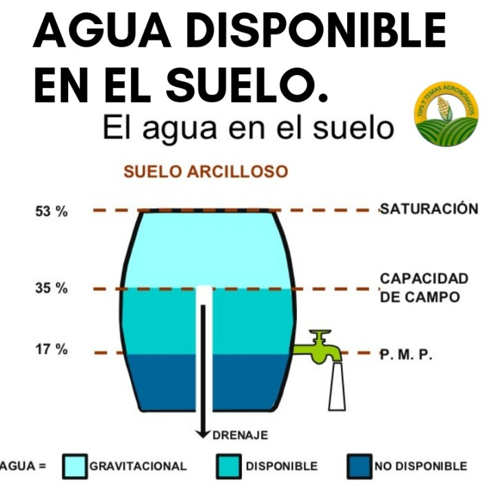 Cual es el agua disponible y no disponible para las plantas