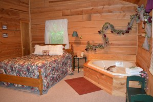 1 bedroom Townsend cabin