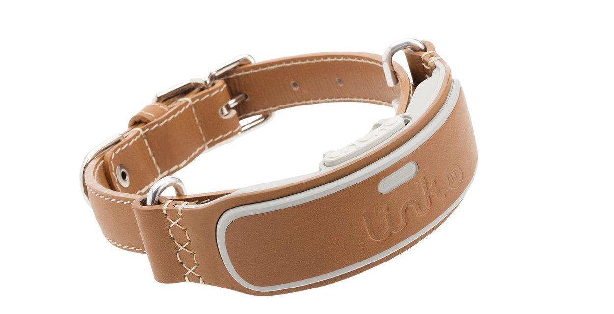 Link AKC Smart Dog Collar: Reviews & Specs