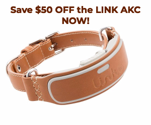 Link AKC Smart Collar Discount