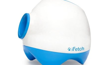 iFetch Too Ball Launcher For Large Dogs: Review