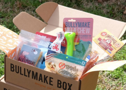BullyMake Box For Your Dog: Review & Coupon Code