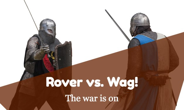 Rover vs. Wag! – Which Service Is Better For You?