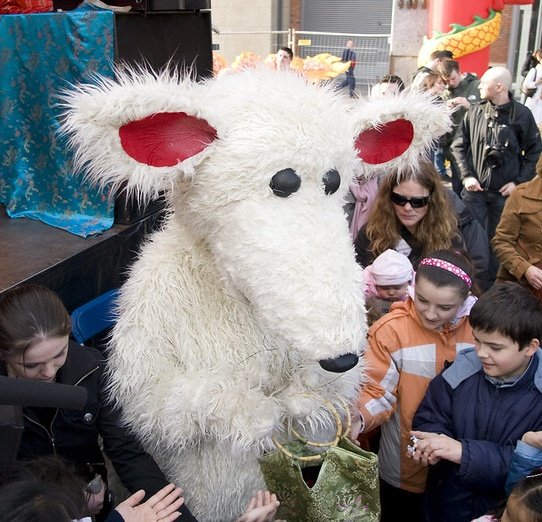 Celebrating the year of the rat in Dublin