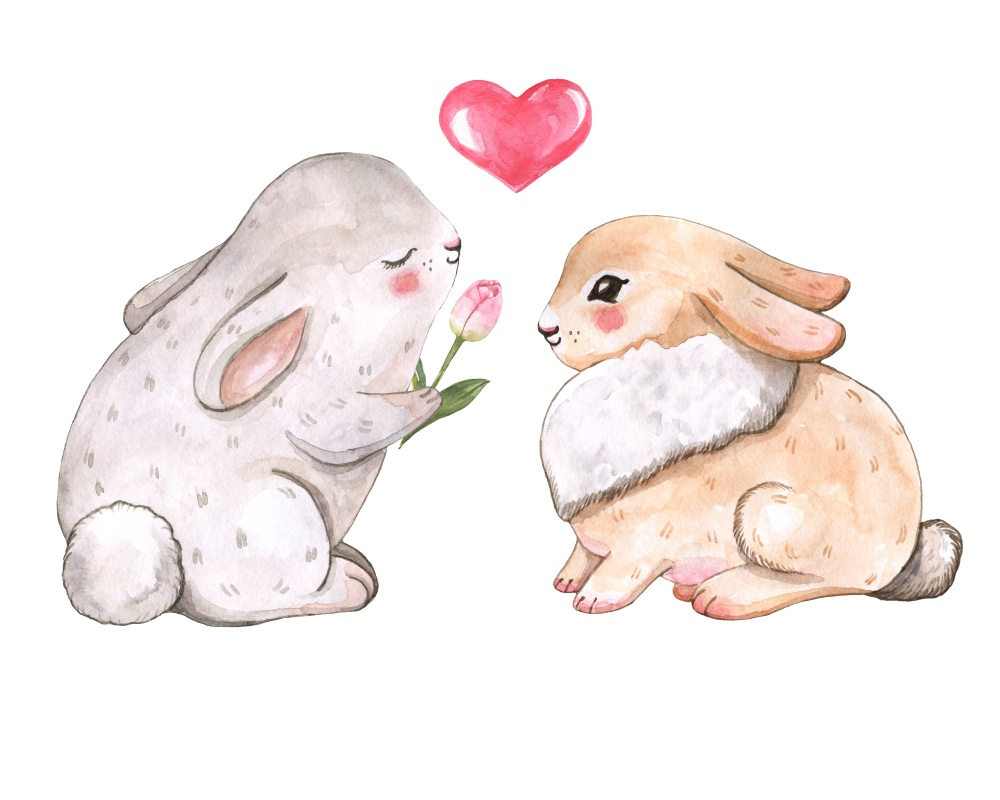 Two Easter bunnies in love
