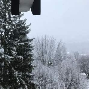 Last day, snowing