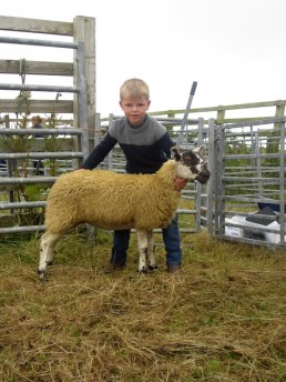 Champion Young Stockperson