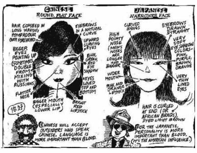 Esquema facial de diferencias entre chino y japonés