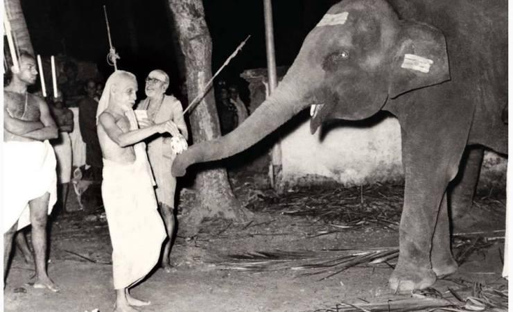 Kanchi-Paramacharya-With-The-Temple-Elephant