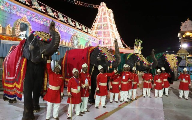 Tirumala Temple Elephants