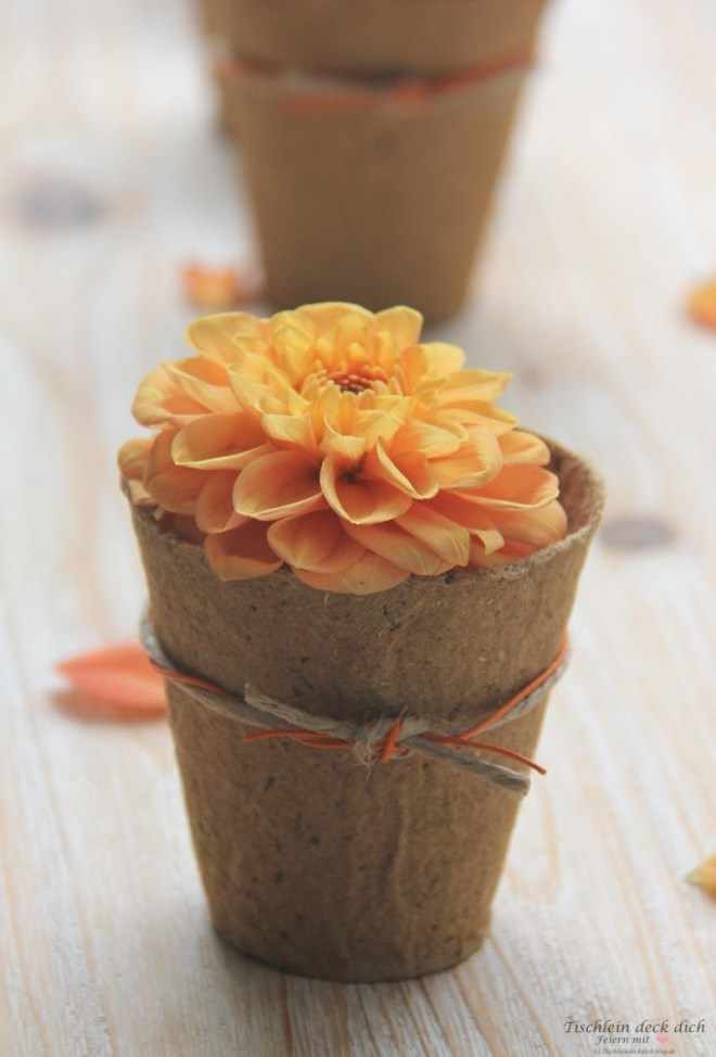 herbstliche Blumendekoration mit oranger Dahlie