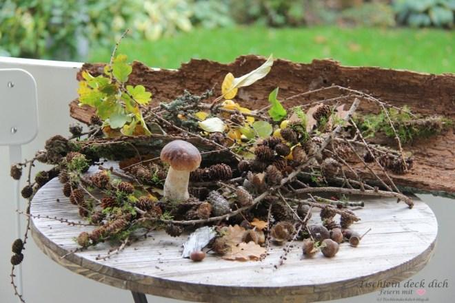 Fundstücke aus dem Wald