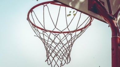 Basket/LFB : Zoom sur le mercato de Landerneau