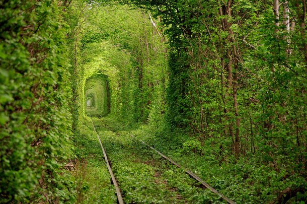 Tunnel of Love, Ukraine  - Imgur