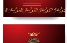 Elegant Golden Border VIP Card Vector 02