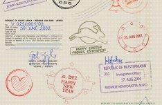 Visas & Passports Vector Template