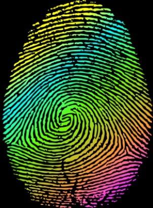 Colored Fingerprint Vector