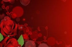 Vector Red Roses with Heart Background