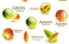 Autumn Nature and Green Nature Icons Vector