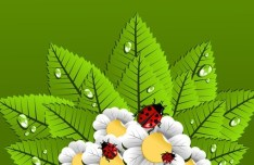 Happy Spring Green Leaves and Flowers Vector 04