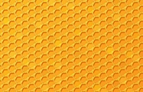 Free Simple Yellow Hon...
