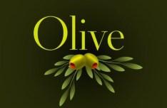 Elegant Vector Olive Oil Design Elements 02