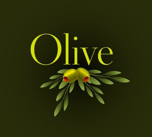 Elegant Vector Olive Oil Design Elements 02