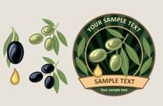 Elegant Vector Olive Oil Design Elements 05