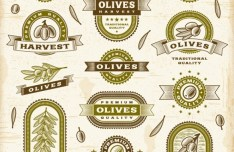 Vintage Premium Quality Olive Oil Label Stickers Vector